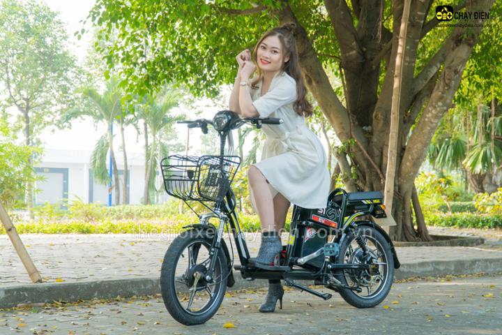 Bảng giá các xe đạp điện EV
